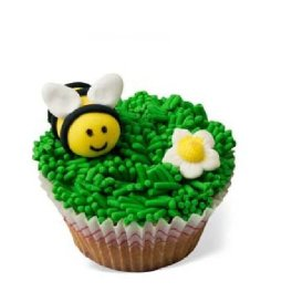 cupcakes 1555