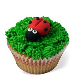 cupcakes 1556