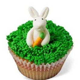 cupcakes 1557