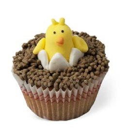 cupcakes 1559